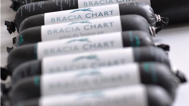 braciachart2